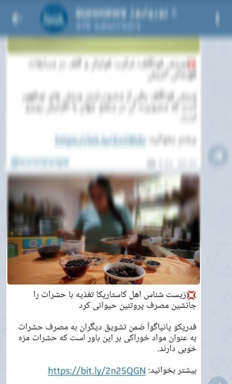 اوج نفاق و دو رورویی رسانه فارسی زبان یورونیوز با تبلیغ حشرهخواری