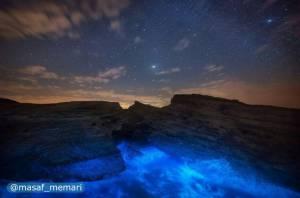 جزیره لارک | خلیج فارس
