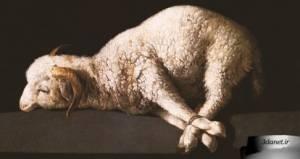 قربانی حیوانات در ایران باستان
