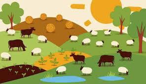 حضور دام در مراتع عامل احیای مراتع است