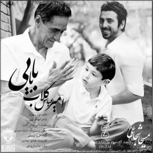 آهنگ « بابایی »  خواننده: امیرعباس گلاب