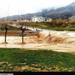 استاندار بوشهر: بارندگی ها، بیشتر در جنوب استان بود که سیلاب، خسارت هایی را به مزارع، باغ ها، زیر ساخت شهر و جاده ها وارد کرد.