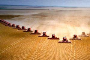 آمریکا به دنبال افزایش دسترسی کشاورزان به زمینهای قابلکشت است