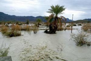 بارش های بی نظیر در سیستان و بلوچستان