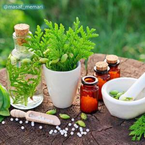 استفاده از گیاهان دارویی در طراحی فضای سبز شهری | تاثیرات گیاهان فضای سبز بر شهر