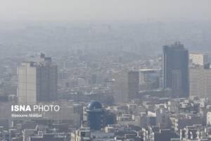 دکتر حبیب الله فصیحی، عضو هیئت علمی دانشکده علوم جغرافیایی دانشگاه خوارزمی: آلودگی هوا جمعیت سوسکهای قرمز را زیاد کرده است!