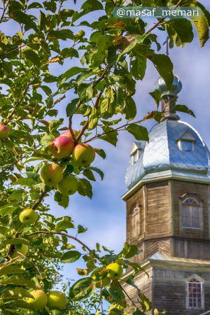 کاشت درختان میوه در کلیساها