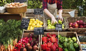 زنجیره تولید تا مصرف محصولات کشاورزی