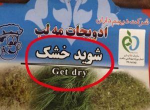 ترجمه بسیار دقیق و کارشناسی شوید خشک به انگلیسی!