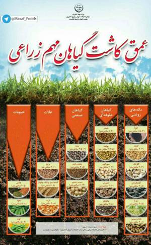 عمق کاشت گیاهان مهم زراعی