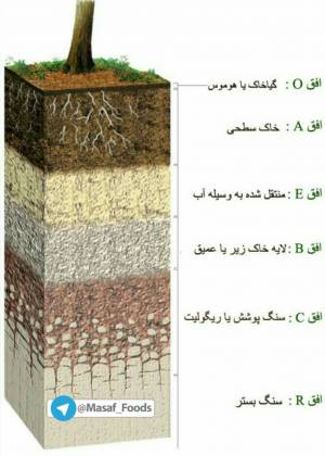 اثر انگشت خاک (نیمرخ خاک) شامل چه ویژگیهایی میشود؟
