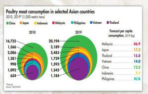 جدیدترین آمار سرانه مصرف گوشت مرغ