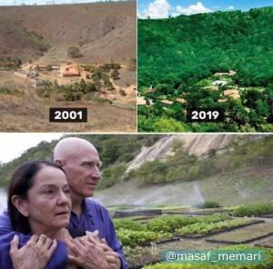 ایجاد جنگل توسط زن و شوهر در برزیل